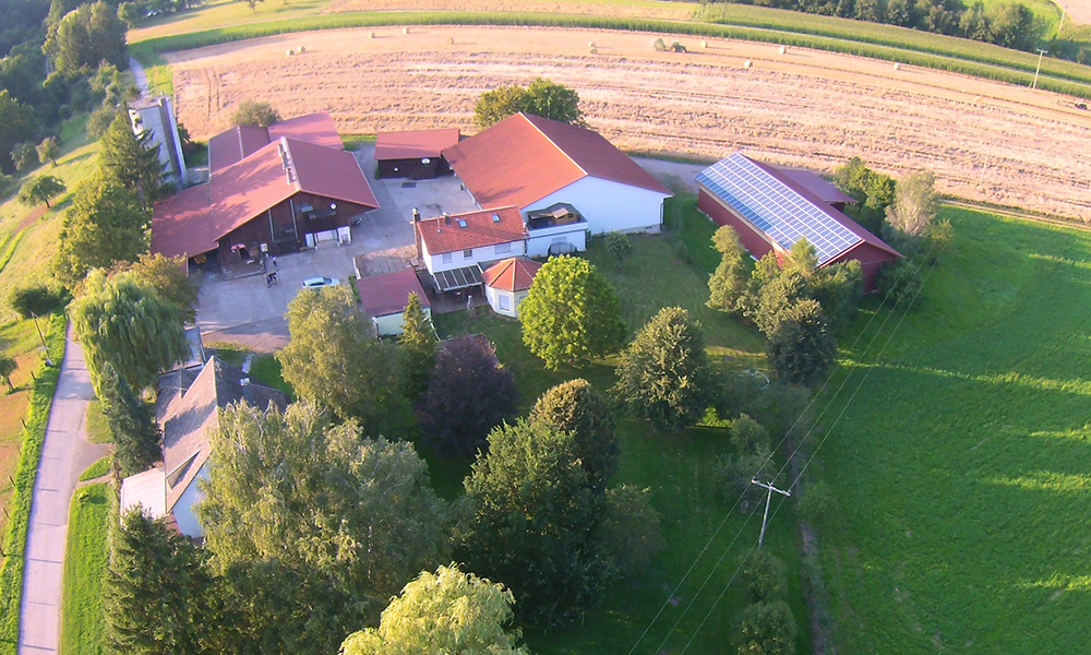 Historie Buchenhofer Bauernladen im Schönbuch